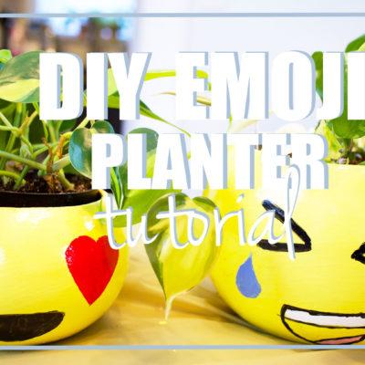 DIY Emoji Planter